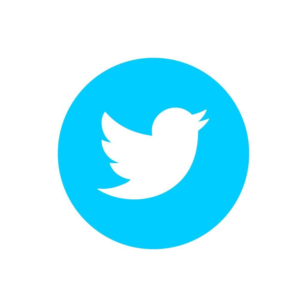icona di twitter