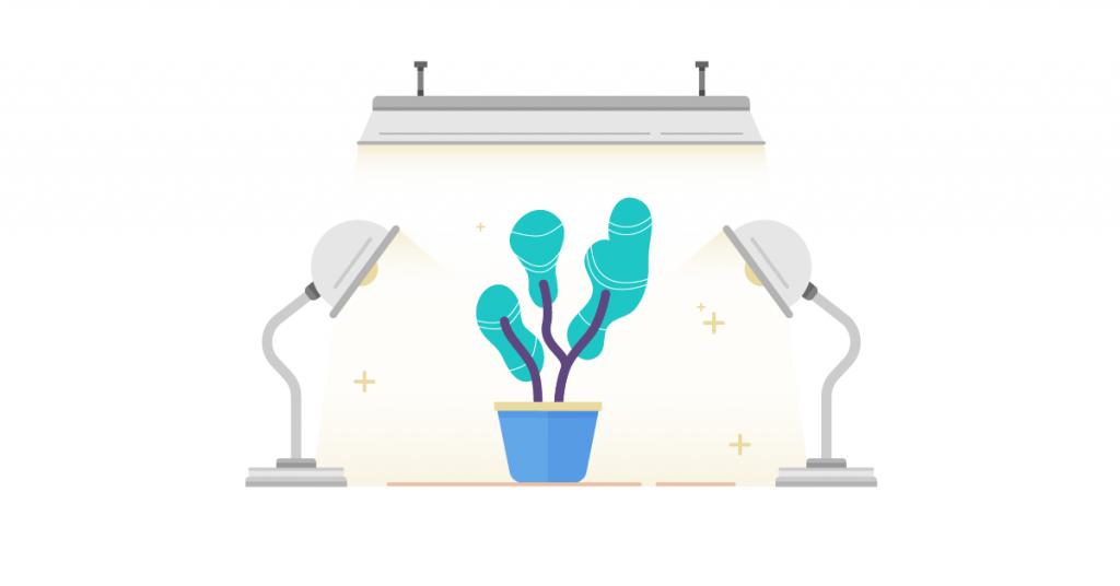 growth hacking e web marketing