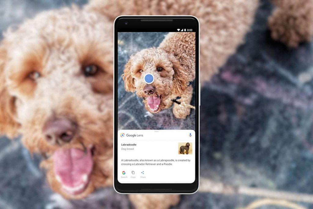 Google integra la funzione Lens nella ricerca delle immagini di Chrome